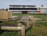 Woodmuir Primary