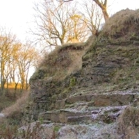 4. East Kirkton Quarry, near Bathgate