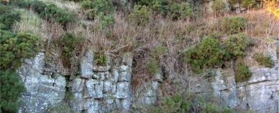 27 Rifle Range Quarries Bathgate Hills