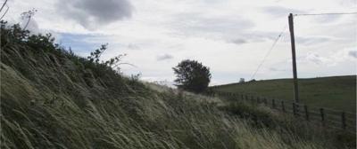 44 Craigton Hill Quarry near Winchburgh