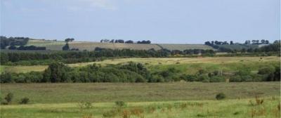 48 Tailend Moss by Bathgate
