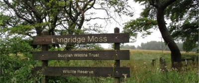 49 Longridge Moss west of Stoneyburn in the Breich Valley