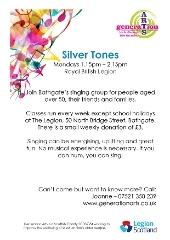 Silver Tones description