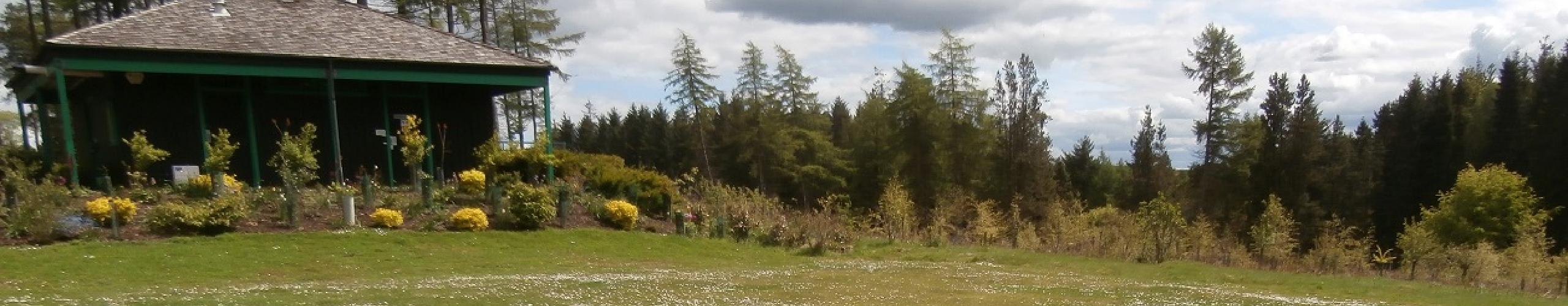 General Campsite