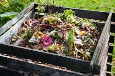 Compost Heap - Garden Waste