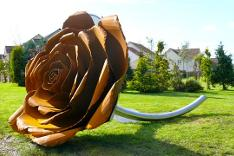 Rose 1 - Wester Inch Public Art