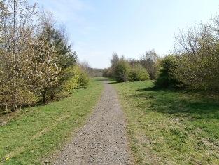 Broxburn Community Woodland