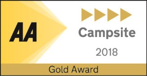 AA 4 pennant gold award Displays a larger version of this image in a new browser window