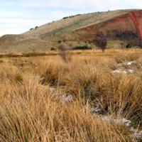 6 Seafield Law-east of Easter Inch Moss Blackburn