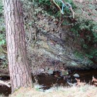 9 Murieston Water by Calderwood Country Park