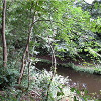 12 Union Canal in Winchburgh
