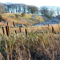 26 Petershill Quarries north east Bathgate