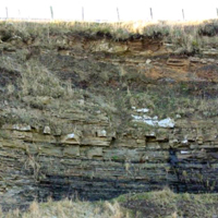 28 Hilderston Silver Mine Quarry Bathgate Hills