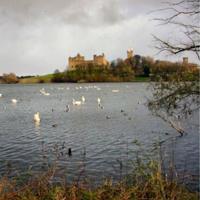 47 Linlithgow Loch