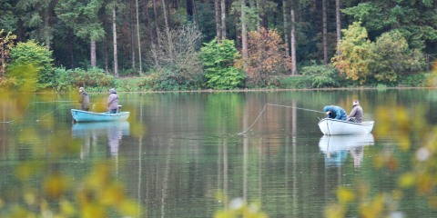 Fishing Page Header