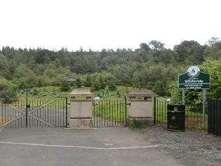 Witchcraig Woodland